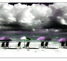 Parasols on the beach at Honeymoon Island State Park by Mal Bray