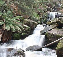 Keppel Falls  by panyta