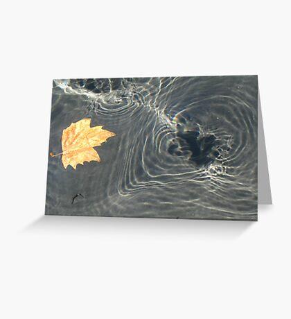 Floating Leaf Casting Shadow Greeting Card