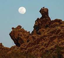 Rising Moon Over Lava and Lichens by Karen Zimmerman