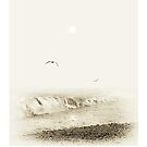 Gulls flying over breaking waves during a sea mist by Mal Bray