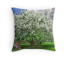A Pleasant Place to Rest Throw Pillow