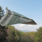 The Money Plane by Ginny York