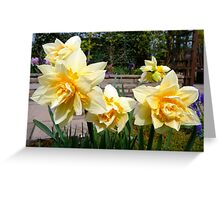 Double Spring Sunshine Greeting Card