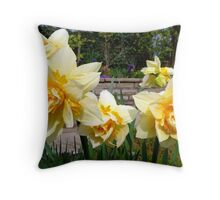 Double Spring Sunshine Throw Pillow