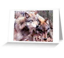 Wolves Greeting Card