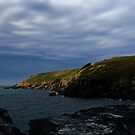 Muttonbird Island -Coffs Harbour by Evita