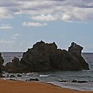 Camel Rock by Evita