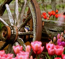 Wagon Wheels and Tulips by lizalady