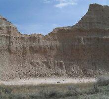 Badlands South Dakota by Diane Trummer Sullivan