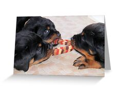 "Pups At Play - ""Three's A Crowd"" Greeting Card"