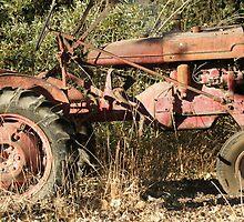 Welcome to the farm; Atascadero, CA USA by leih2008