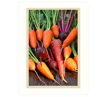 Harvest Organic Vegetables Art Print