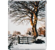 Snow and sunshine iPad Case/Skin