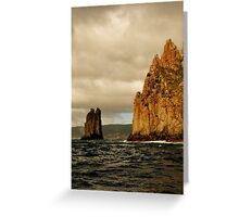 Tasmania, Port Arthur Eco Wilderness Journey Cruises Greeting Card
