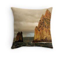 Tasmania, Port Arthur Eco Wilderness Journey Cruises Throw Pillow