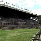 North Melbourne Football Ground,Arden street,NorthMelbourne by Rosina  Lamberti
