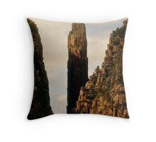 Tasmania, Eco Widerness Tours Cruises, Port Arthur Throw Pillow