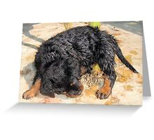 Been Swimming? Greeting Card