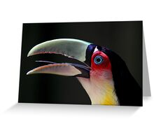 Red Breasted Toucan Portrait at Iguassu, Brazil Greeting Card