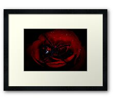 I Did It For Love Framed Print