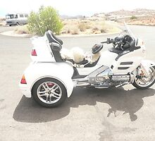 A Three Wheeler Motorbike. by Mywildscapepics