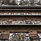 Across The Tracks - 2 by Eric Scott Birdwhistell