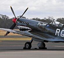 Shark Art, Spitfire by bazcelt