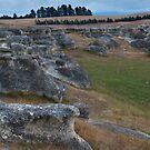 Elephant Rocks by Werner Padarin