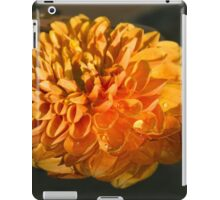 Chrysanthemum Gently Floating in the Fountain of Campo de Fiori, Rome, Italy iPad Case/Skin