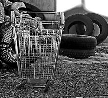 Tire Shopping by cherylc1