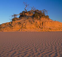 Walls of China, Lake Mungo, SW NSW, Australia by Neville Jones