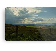 Looking seaward Metal Print