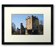 Blarney at it's Finest Framed Print