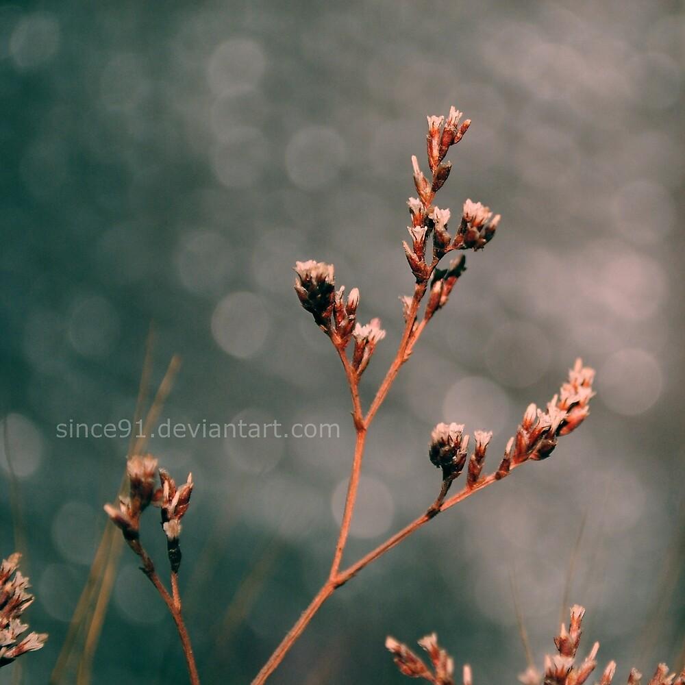 Tiny World by Iulia (since91)