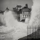 Wet front by marshall calvert  IPA