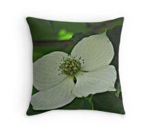 Dogwood Blossom Throw Pillow