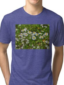In a Field of White Tri-blend T-Shirt