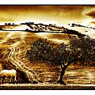Pastelero Textures - Andalucian Countryside by Mal Bray