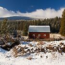 Red Barn in Winter by Tracy Riddell