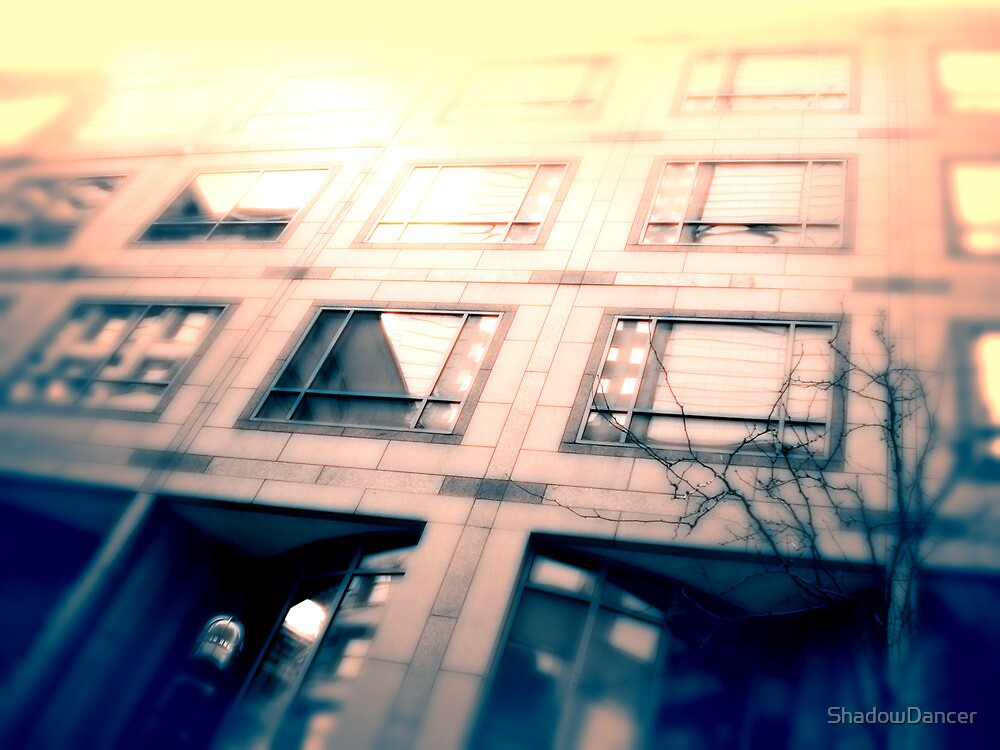 Cityscapes - Perspective by ShadowDancer