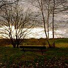 Bench by Luke Stevens