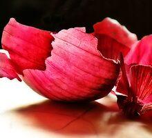 Spanish Onion by John Poon