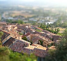 French village roofs by swhite99