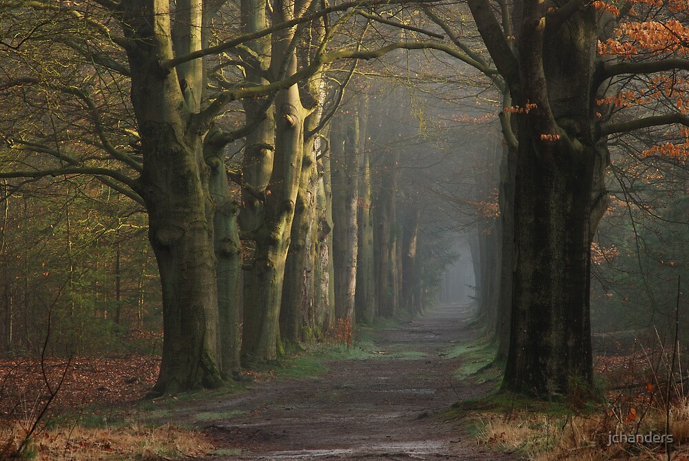 Venturing onto the mystery lane by jchanders