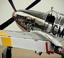 Betty Jane in waiting by Pilot Graphics Photography