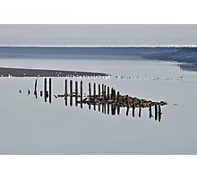 Posts in water. Photographic Print