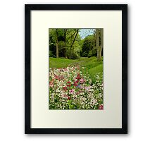 Chanticleer Primula Garden Framed Print