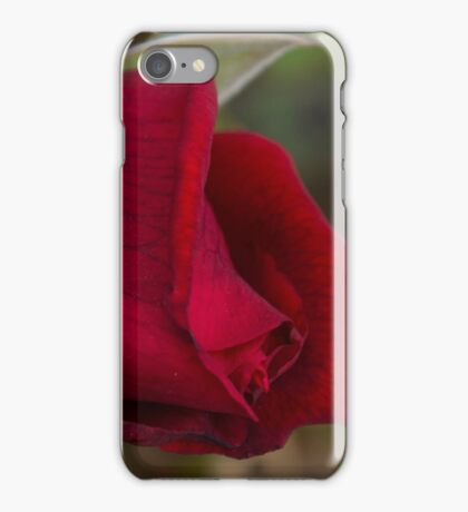A Ruby Red Promise iPhone Case/Skin