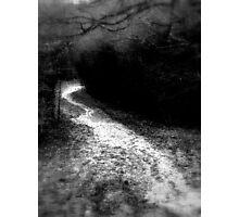 Wet and Winding III Photographic Print